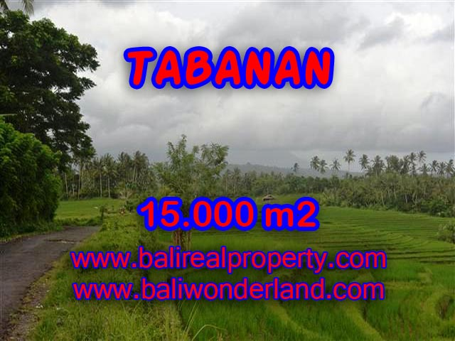 INVESTASI PROPERTI DI BALI - JUAL MURAH TANAH DI TABANAN BALI TJTB094