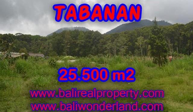 TANAH MURAH DIJUAL DI TABANAN BALI TJTB085