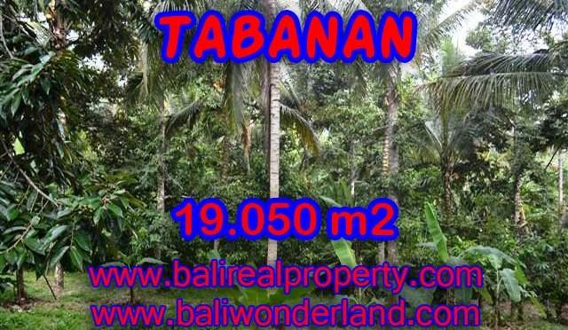 MURAH ! DIJUAL TANAH DI TABANAN TJTB092 – PELUANG INVESTASI PROPERTY DI BALI