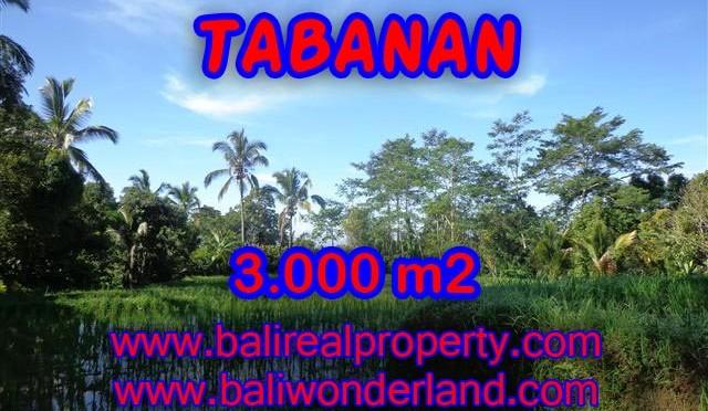 INVESTASI PROPERTI DI BALI – TANAH DIJUAL DI TABANAN BALI MURAH TJTB110
