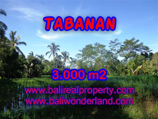 INVESTASI PROPERTI DI BALI - TANAH DIJUAL DI TABANAN BALI MURAH TJTB110