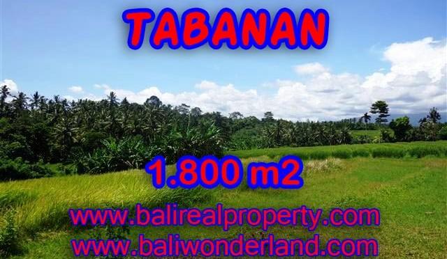 INVESTASI PROPERTI DI BALI – TANAH DI TABANAN BALI DIJUAL CUMA RP 750.000 / M2