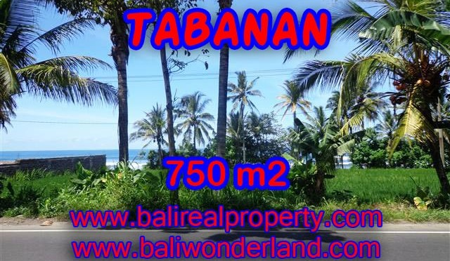 TANAH MURAH DIJUAL DI TABANAN BALI TJTB105 – PELUANG INVESTASI PROPERTY DI BALI