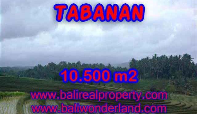 INVESTASI PROPERTI DI BALI – TANAH MURAH DIJUAL DI TABANAN BALI TJTB095