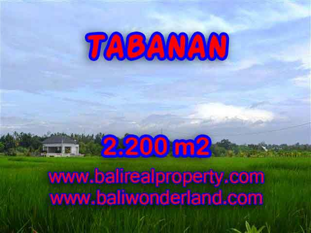 DIJUAL TANAH DI TABANAN BALI CUMA RP 2.650.000 / M2