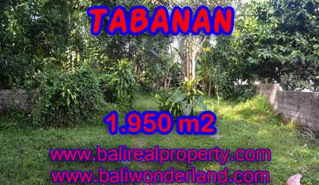 TANAH DIJUAL DI TABANAN BALI MURAH TJTB130 – PELUANG INVESTASI PROPERTY DI BALI