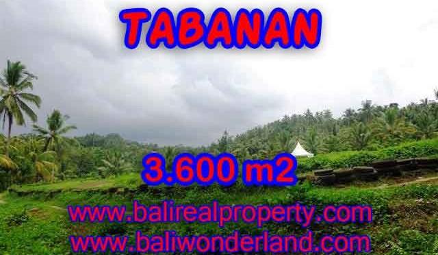 INVESTASI PROPERTI DI BALI – DIJUAL MURAH TANAH DI TABANAN BALI TJTB117