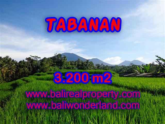 DIJUAL TANAH MURAH DI TABANAN TJTB118 - KESEMPATAN INVESTASI PROPERTY DI BALI