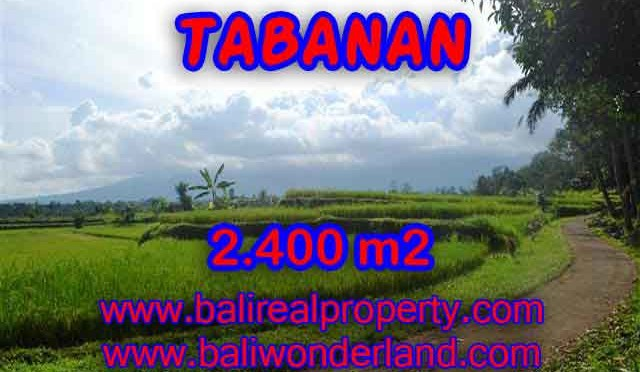 INVESTASI PROPERTI DI BALI – TANAH MURAH DI TABANAN DIJUAL CUMA RP 950.000 / M2