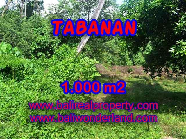 JUAL TANAH DI TABANAN CUMA RP 4.250.000 / M2