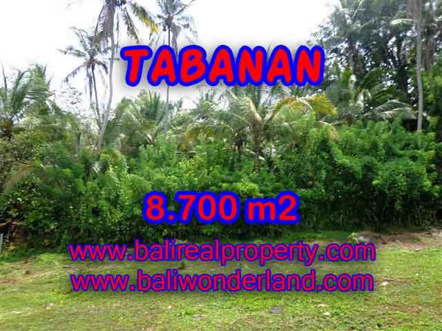 TANAH DIJUAL DI TABANAN CUMA RP 550.000 / M2