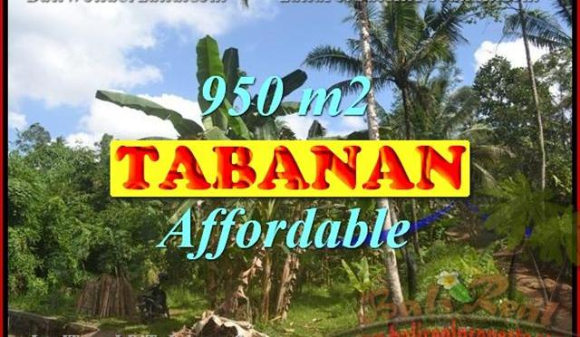 Tanah di TABANAN Bali Dijual murah TJTB146 – investasi property di Bali