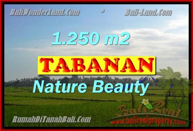 TANAH DIJUAL DI TABANAN BALI TJTB148