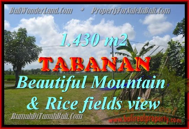 DIJUAL TANAH DI TABANAN BALI MURAH TJTB145 - INVESTASI PROPERTY DI BALI