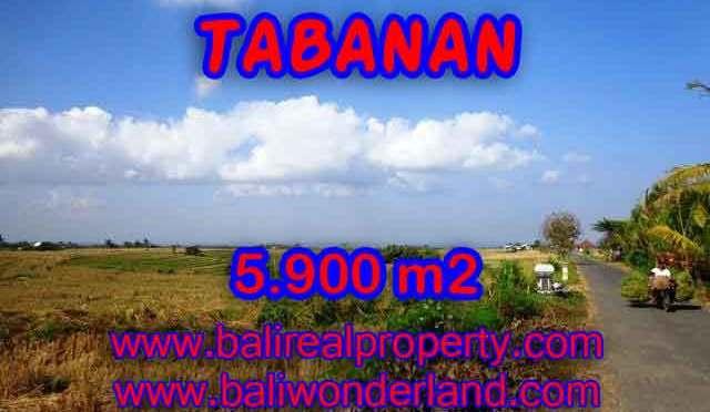 TANAH MURAH DI TABANAN BALI DIJUAL TJTB131 – INVESTASI PROPERTY DI BALI