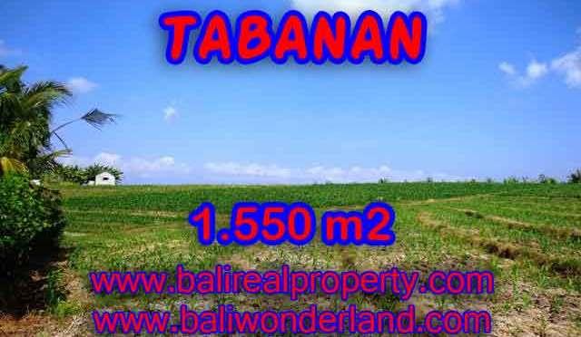 JUAL TANAH DI TABANAN RP 500.000 / M2 – TJTB134