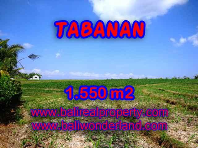 JUAL TANAH DI TABANAN RP 500.000 / M2 - TJTB134