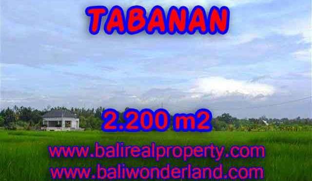 INVESTASI PROPERTI DI BALI – JUAL TANAH DI TABANAN BALI TJTB097