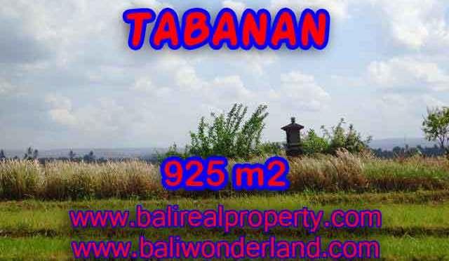 TANAH DIJUAL DI TABANAN RP 1.000.000 / M2 – TJTB135