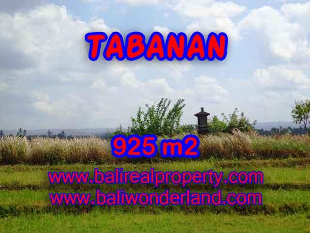 TANAH DIJUAL DI TABANAN RP 1.000.000 / M2 - TJTB135