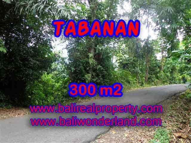 Tanah di TABANAN Bali Dijual murah TJTB116 - investasi property di Bali