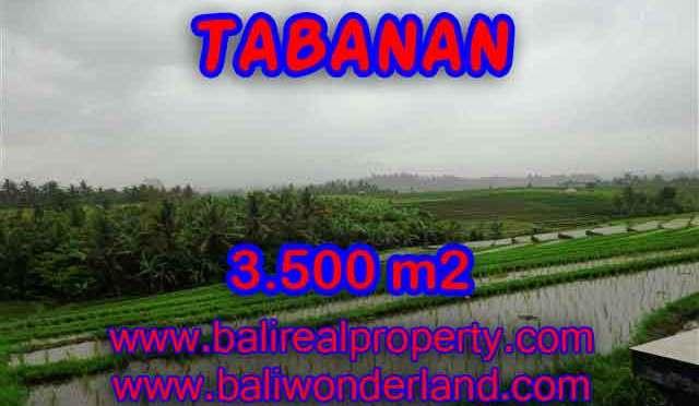 TANAH MURAH DI TABANAN BALI TJTB141 – INVESTASI PROPERTY DI BALI