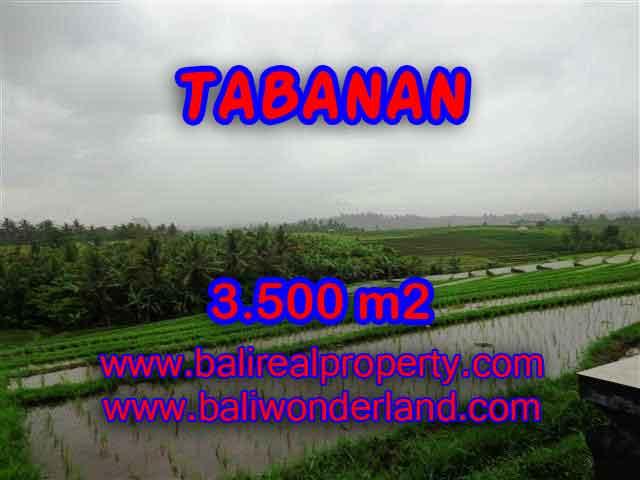 TANAH MURAH DI TABANAN BALI TJTB141 - INVESTASI PROPERTY DI BALI