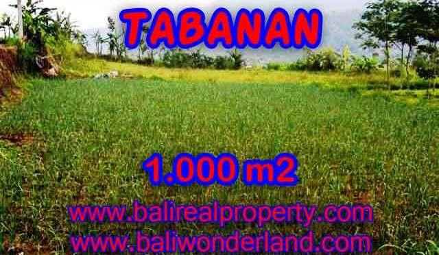 DIJUAL MURAH TANAH DI TABANAN TJTB101 – PELUANG INVESTASI PROPERTY DI BALI