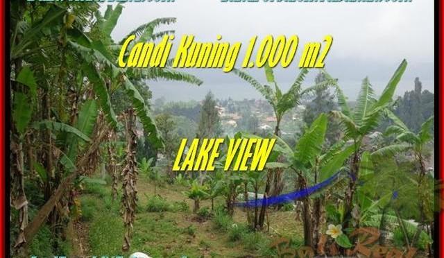 JUAL MURAH TANAH di TABANAN 10 Are View Danau Beratan dan Gunung