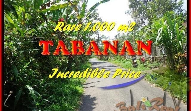 TANAH di TABANAN JUAL 10 Are View kebun