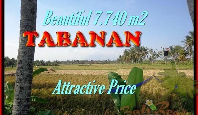 TANAH MURAH di TABANAN 7.740 m2 di Tabanan kota