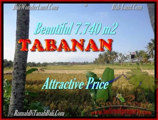 INVESTASI PROPERTY, DIJUAL TANAH MURAH di TABANAN TJTB173