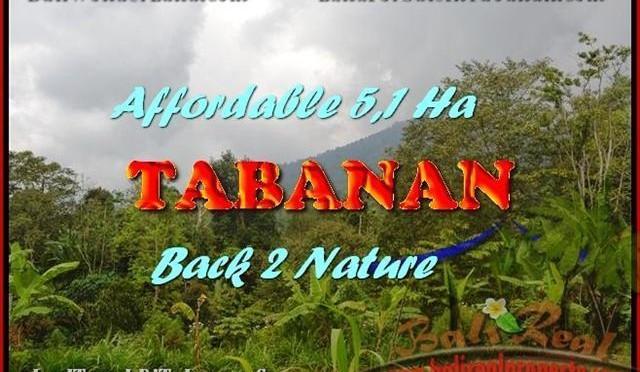 DIJUAL TANAH MURAH di TABANAN TJTB166