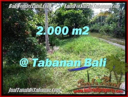 DIJUAL TANAH MURAH di TABANAN 2,000 m2 di Tabanan Selemadeg