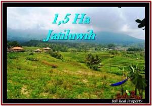 JUAL TANAH MURAH di TABANAN BALI 150 Are di Tabanan Penebel