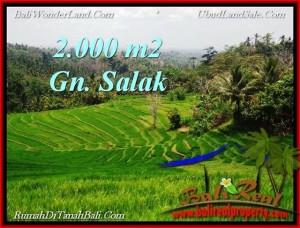 JUAL TANAH MURAH di TABANAN BALI 2,000 m2  View Gunung, sawah, Kota Denpasar