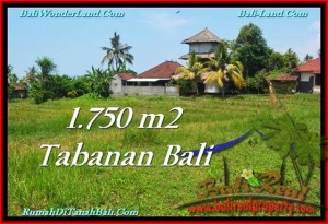 JUAL TANAH MURAH di TABANAN BALI 1,750 m2 View Laut dan Gunung