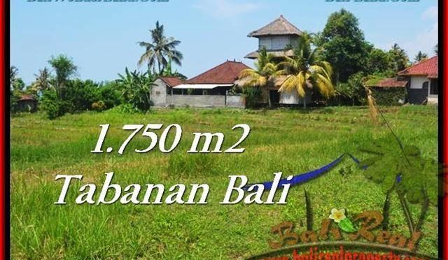 DIJUAL TANAH di TABANAN Untuk INVESTASI TJTB231