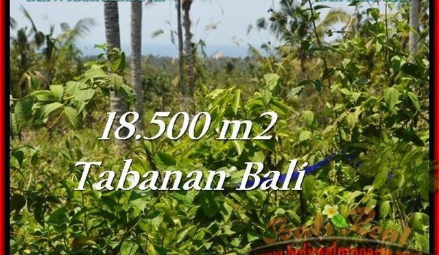 TANAH MURAH di TABANAN BALI Untuk INVESTASI TJTB232