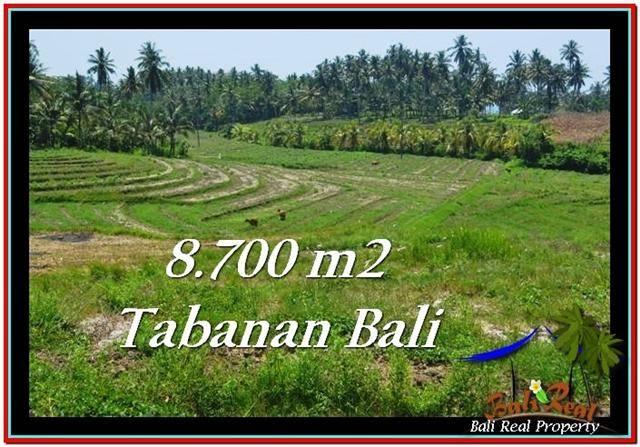TANAH di TABANAN BALI DIJUAL MURAH 87 Are View Laut dan Gunung
