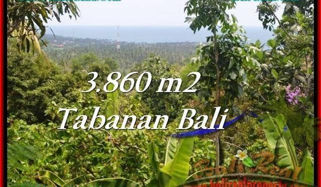 JUAL TANAH MURAH di TABANAN 3,860 m2  View Laut dan Kebun