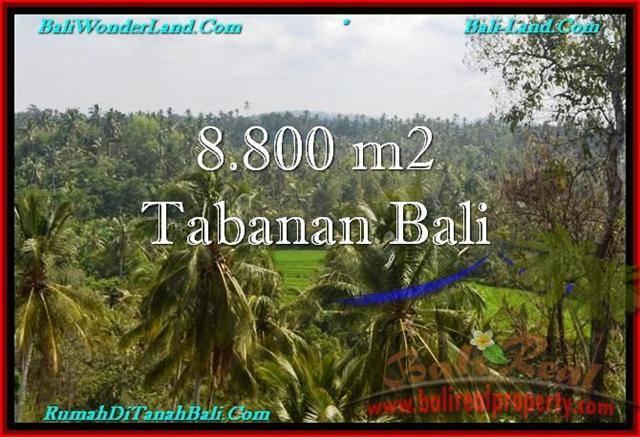 TANAH di TABANAN DIJUAL 8,800 m2 di Tabanan Selemadeg