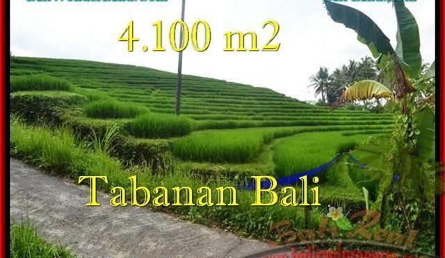 TANAH MURAH di TABANAN BALI Untuk INVESTASI TJTB239