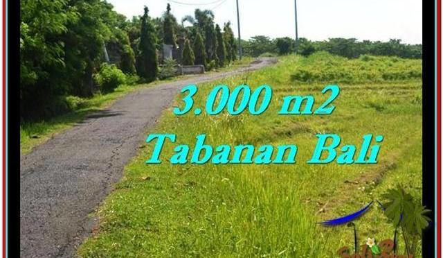 INVESTASI PROPERTY, TANAH MURAH di TABANAN BALI TJTB246