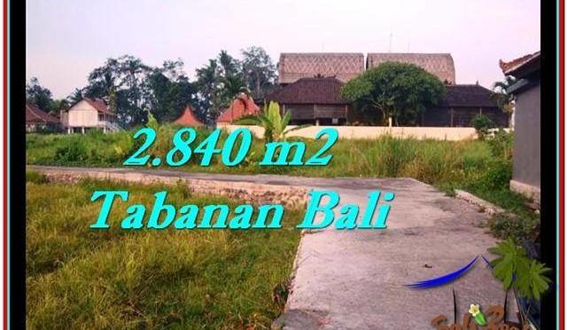 JUAL TANAH di TABANAN BALI 2,840 m2  View sawah