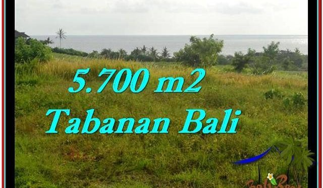 TANAH DIJUAL MURAH di TABANAN BALI TJTB250