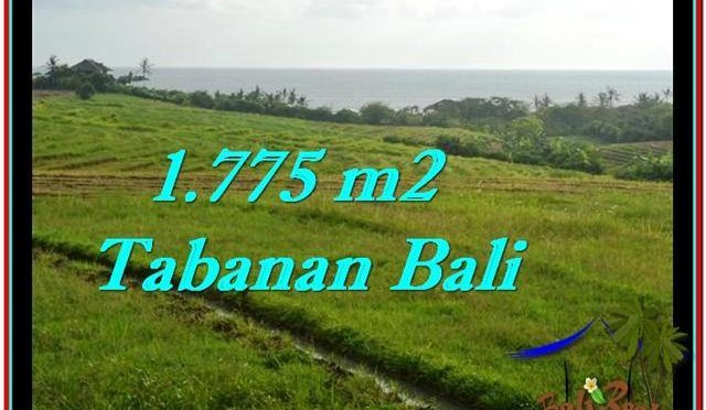 TANAH di TABANAN DIJUAL 1,775 m2 di Tabanan Selemadeg