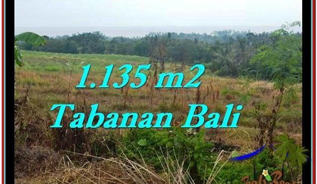 INVESTASI PROPERTI, DIJUAL TANAH di TABANAN BALI TJTB253
