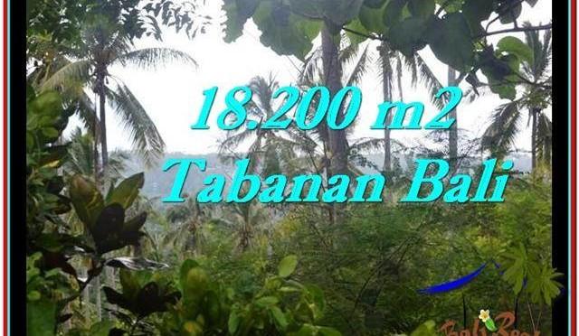 JUAL TANAH MURAH di TABANAN BALI 18,200 m2  View kebun dan laut