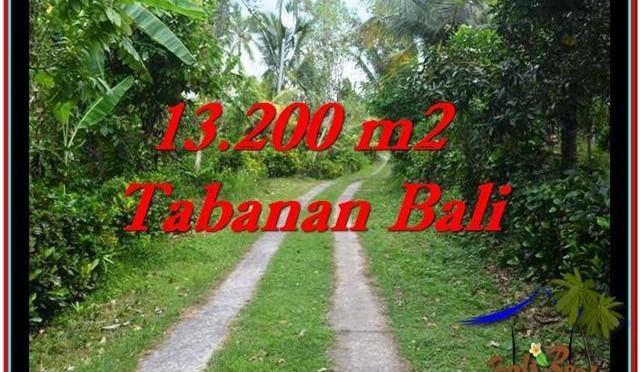 TANAH di TABANAN DIJUAL Untuk INVESTASI TJTB255